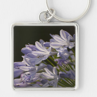 Blue Hostas Silver-Colored Square Keychain
