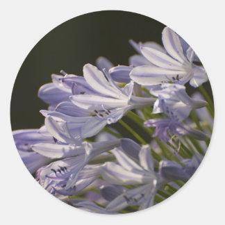 Blue Hostas Classic Round Sticker