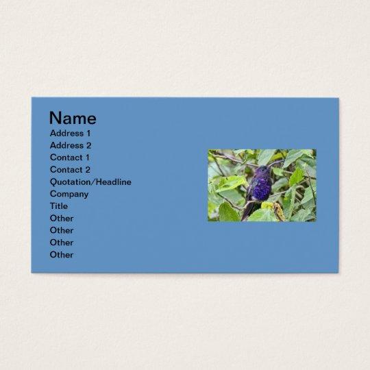 Blue Hummingbird Photo Business Card