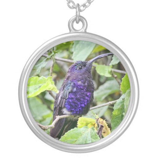 Blue Hummingbird Photo Necklaces