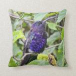 Blue Hummingbird Photo Pillows