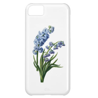 Blue Hyacinth Drawn from Nature iPhone 5C Cover