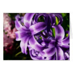 Blue Hyacinth I Spring Floral Card