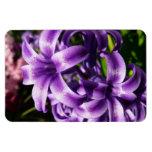 Blue Hyacinth I Spring Floral Magnet