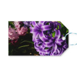 Blue Hyacinth II Spring Floral Gift Tags