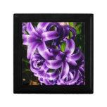 Blue Hyacinth II Spring Floral Jewelry Box