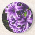 Blue Hyacinth II Spring Floral Sandstone Coaster