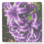 Blue Hyacinth II Spring Floral Stone Coaster