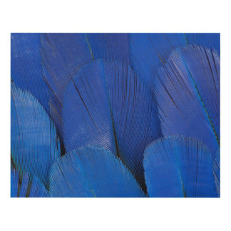 Blue Hyacinth Macaw Feather Design Panel Wall Art