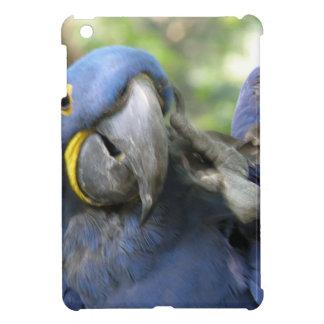 Blue Hyacinth Macaw iPad Mini Covers