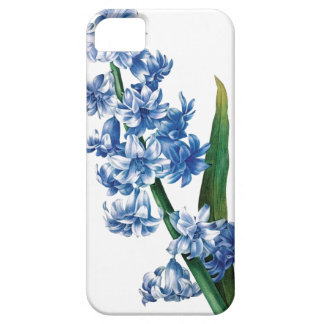 Blue hyacinth vintage illustration iPhone SE/5/5s case