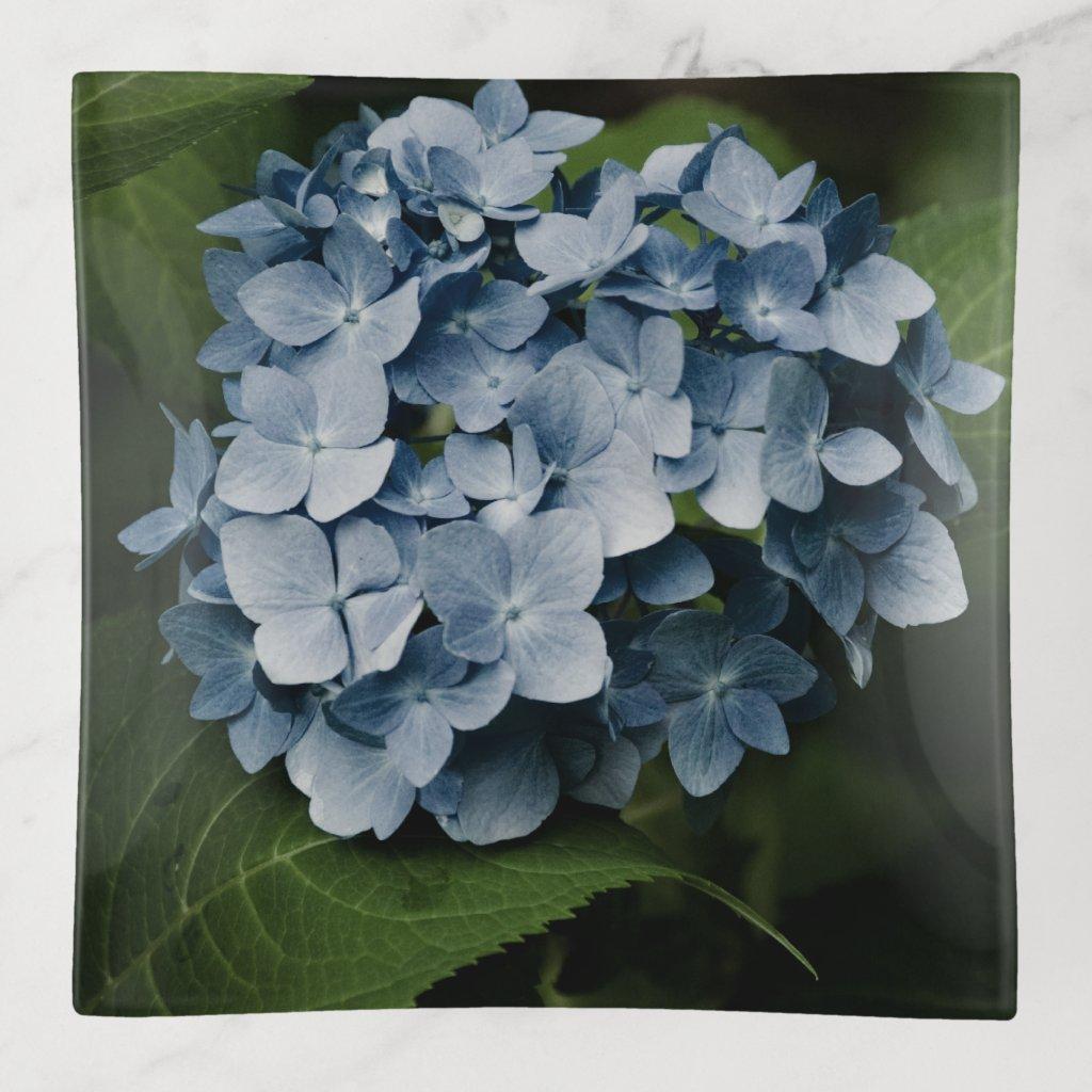 Blue Hydrangea 8515 Trinket Trays