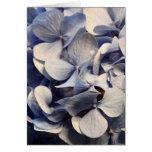 Blue Hydrangea Blank Notecards Card