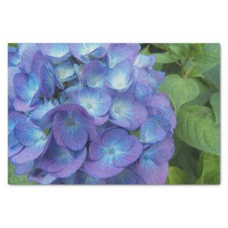 "Blue Hydrangea Blossoms Floral 10"" X 15"" Tissue Paper"