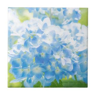 Blue Hydrangea Ceramic Tile