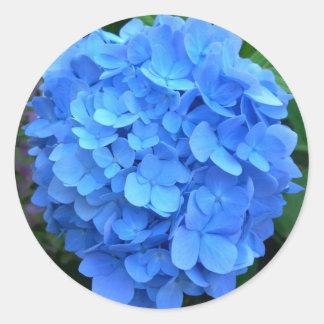 Blue Hydrangea Classic Round Sticker
