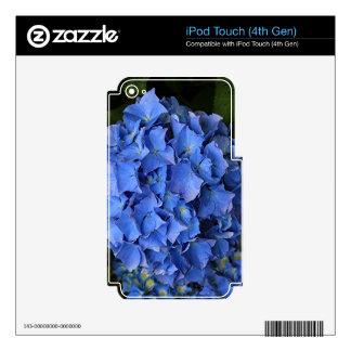 Blue hydrangea flower in bloom 2 iPod touch 4G decals