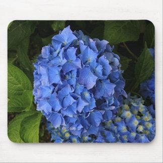Blue hydrangea flower in bloom 2 mouse pad