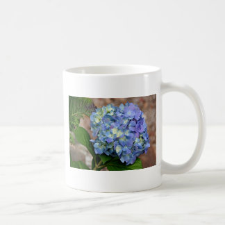 Blue Hydrangea flower in bloom Coffee Mug