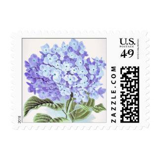 Blue Hydrangea Flower Postage