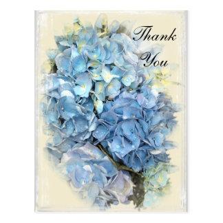 Blue Hydrangea Flower Thank You Note Postcard