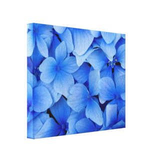 Blue Hydrangea Flowers Canvas Print