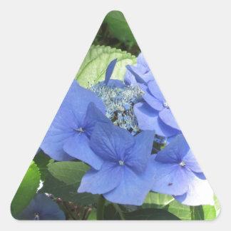 Blue Hydrangea flowers (Hydrangea macrophylla) Triangle Sticker