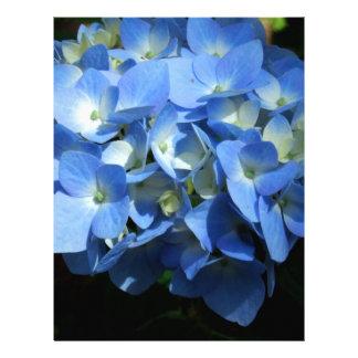 Blue Hydrangea II Letterhead