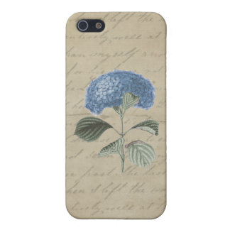 Blue Hydrangea on Vintage Calligraphy Cover For iPhone SE/5/5s