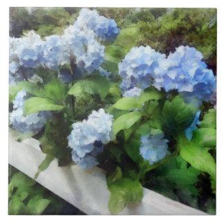 Blue Hydrangea on White Fence Ceramic Tile