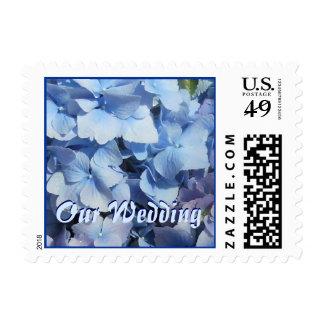 Blue Hydrangea Our Wedding Postage Stamp