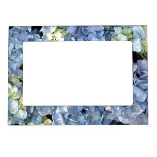 Blue Hydrangea Picture Frame Frame Magnet