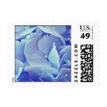 Blue Hydrangea Postage Stamps