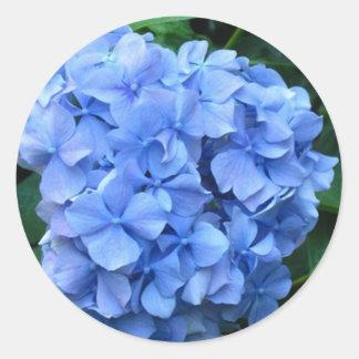 Blue Hydrangea Round Stickers