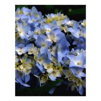 Blue Hydrangea-s6.jpg Letterhead