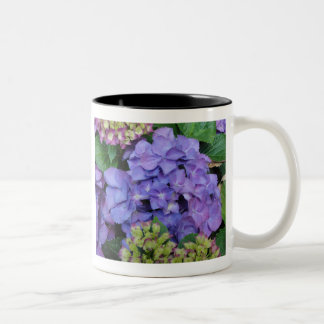 Blue Hydrangea Two-Tone Coffee Mug