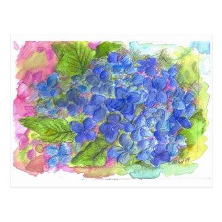 Blue Hydrangea Watercolor Flower Art Postcard