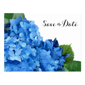 Blue Hydrangea Wedding Save the Date Postcards