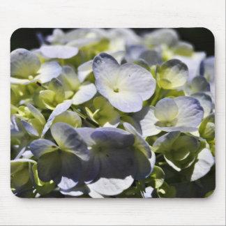 Blue Hydrangeas Flowers Mouse Pad