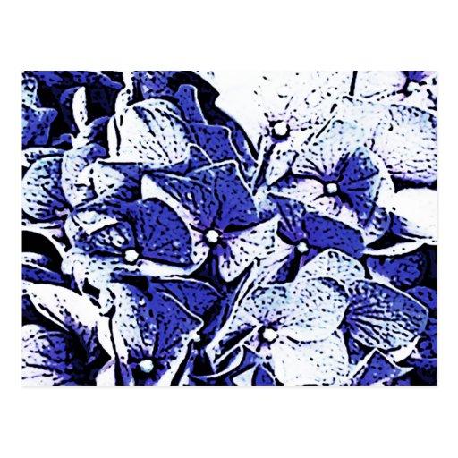 Blue Hydrangeas Post Cards