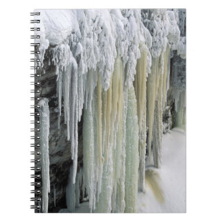 Blue Ice and Ground Water Run Off; Tahquamenon Notebook