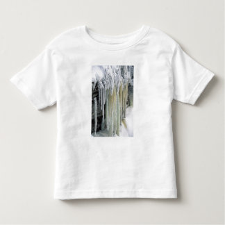 Blue Ice and Ground Water Run Off; Tahquamenon Toddler T-shirt