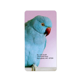 Blue Indian Ring Necked Parakeet With Red Nose Label