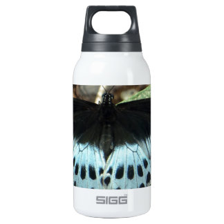 Blue Iridescent Mormon Butterfly Thermos Bottle