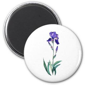 Blue Iris by PMACarlson 2 Inch Round Magnet