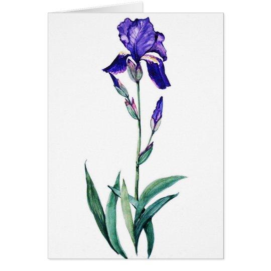 Blue Iris by PMACarlson Card