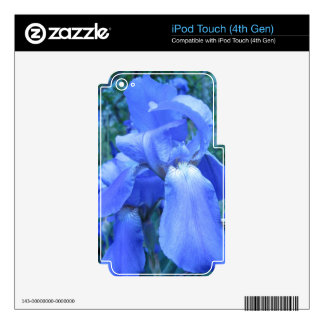 Blue Iris iPod Touch 4G Decals