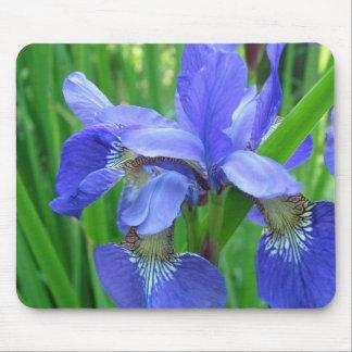 blue iris mouse pad