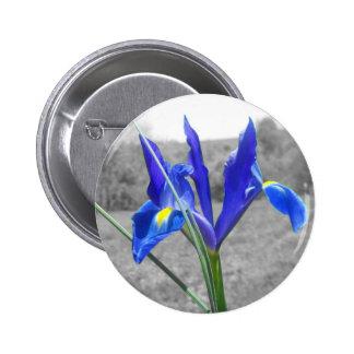 Blue Iris Pinback Button
