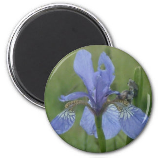 Blue Iris Refrigerator Magnet